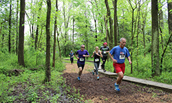 Watershed Trail Run and Festival