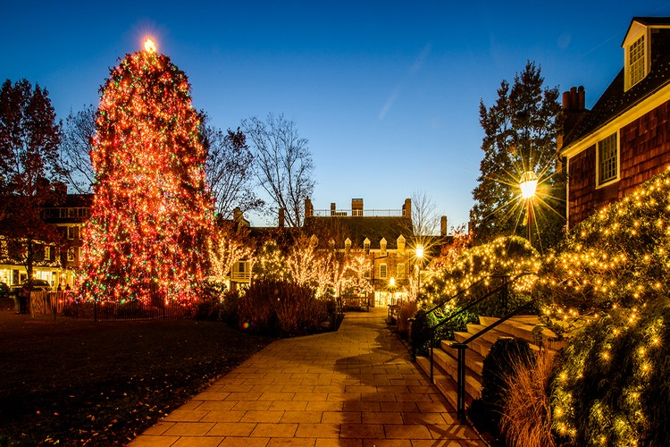 What To Do This December in Princeton