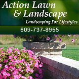 Action Lawn and Landscape