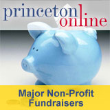 Princeton Online - Non-profs