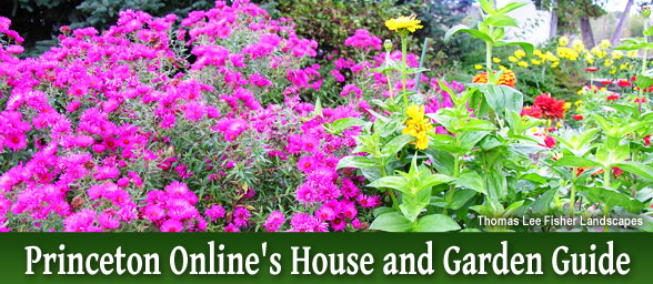Princeton Onlines House and Garden Guide
