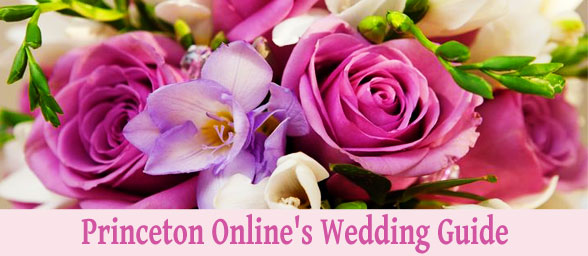 Princeton Onlines Wedding Guide