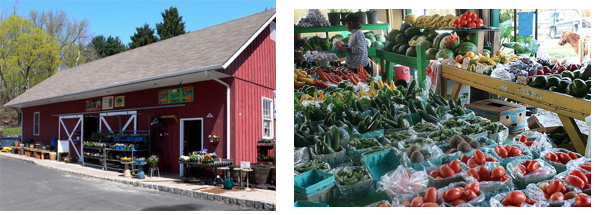 Homestead Farm Market